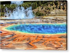 Acrylic Print featuring the painting Yellowstone National Park Grand Prismatic Spring by Christopher Arndt