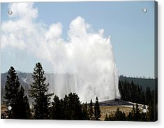 Yellowstone Park A View Of Old Faithful Unrestrained Acrylic Print by Thomas Woolworth