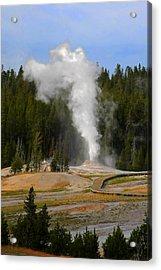 Yellowstone Park Wy - Geyser Letting Off Steam Acrylic Print by Christine Till