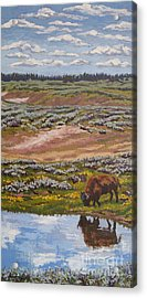 Acrylic Print featuring the painting Yellowstone Reflections by Erin Fickert-Rowland