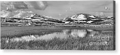 Yellowstone Swan Lake Panoramic Reflections Black And White Acrylic Print by Adam Jewell