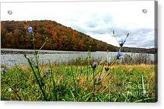 Yellowwood Lake, Southern Indiana Acrylic Print by Scott D Van Osdol