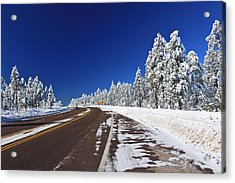 Acrylic Print featuring the photograph Yes Its Arizona by Gary Kaylor