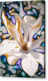 Yet Another Magnolia Acrylic Print