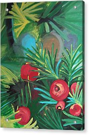 Yew Berries Acrylic Print by Krista Ouellette