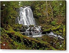 Yocum Falls. Oregon Acrylic Print