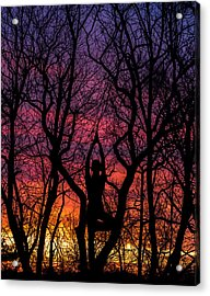 Yoga Tree Pose Sunrise One With The Trees Acrylic Print by Terry DeLuco