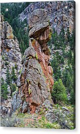 Acrylic Print featuring the photograph Yogi Bear Rock Formation by James BO Insogna