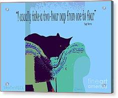 Yogi Cat Nap Acrylic Print