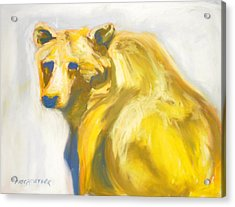 Acrylic Print featuring the pastel Yosemite Bear by Pat Crowther