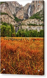 Yosemite Falls Autumn Colors Acrylic Print