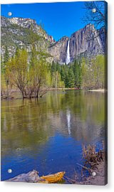 Acrylic Print featuring the photograph Yosemite Falls Cook's Meadow by Scott McGuire