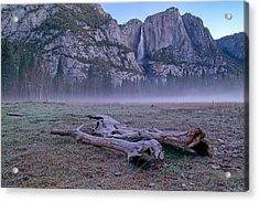 Yosemite Falls Driftwood Acrylic Print