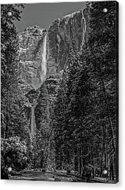Yosemite Falls In Black And White IIi Acrylic Print by Bill Gallagher