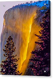 Yosemite Firefall Painting Acrylic Print by Dr Bob Johnston