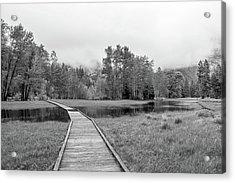 Yosemite Monochrome Acrylic Print