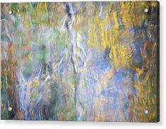 Yosemite Reflections 5 Acrylic Print