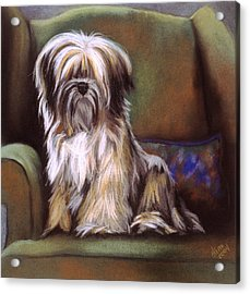 You Are In My Spot Again Acrylic Print by Barbara Keith