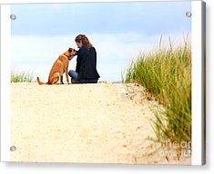 Acrylic Print featuring the photograph You Are My Sunshine by Dana DiPasquale