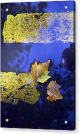 You Can Park Acrylic Print by Jez C Self