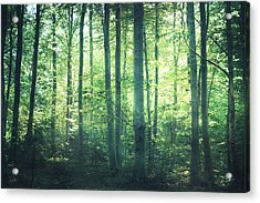 You Can Still Hear Her Song Acrylic Print