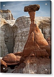 You Do Acrylic Print by Mike McMurray