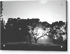 You Inspire Acrylic Print by Laurie Search