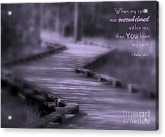 You Knew My Path Acrylic Print by Debra Straub