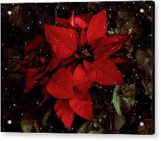 You Know It's Christmas Time When... Acrylic Print