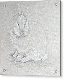 You Looking At Me? Acrylic Print by Deborah Dendler