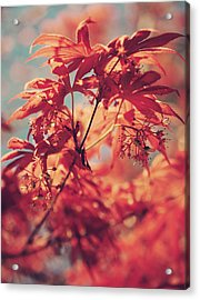 You Make Me Feel Acrylic Print by Laurie Search
