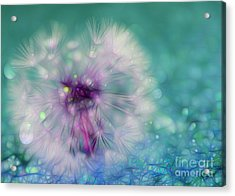 Your Wish Will Come True Acrylic Print by Krissy Katsimbras
