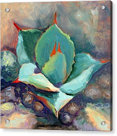 Young Agave Acrylic Print by Athena Mantle