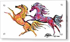 Young Horses Playing Acrylic Print