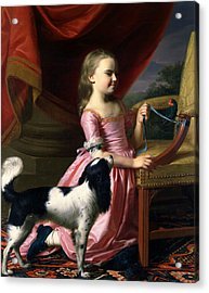 Young Lady With A Bird And A Dog Acrylic Print by John Singleton Copley