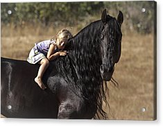 Young Rider Acrylic Print by Wes and Dotty Weber