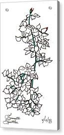 Young Rose Bush Acrylic Print by Lynnette Jones