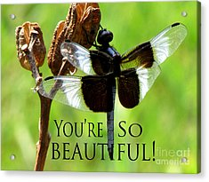 You're So Beautiful Acrylic Print by Gardening Perfection