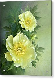Acrylic Print featuring the digital art Yumi Itoh Peony by Thanh Thuy Nguyen