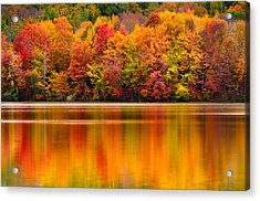 Yummy Autumn Colors Acrylic Print