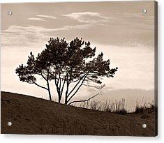 Acrylic Print featuring the photograph Yyteri Evening by Jouko Lehto