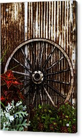 Zahrada Acrylic Print by Greg Collins