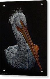 Zamboni Acrylic Print