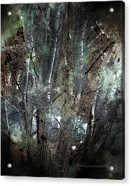Zauberwald Vollmondnacht Magic Forest Night Of The Full Moon Acrylic Print