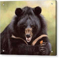 Zebedee Moon Bear - In Support Of Animals Asia Acrylic Print