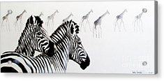Zebra And Giraffe Acrylic Print