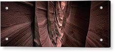 Acrylic Print featuring the photograph Zebra Canyon by Edgars Erglis
