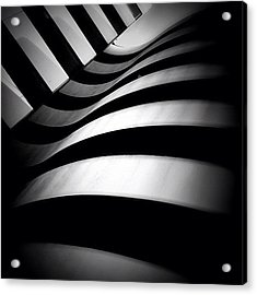 Zebra City - Concrete Jungle Acrylic Print