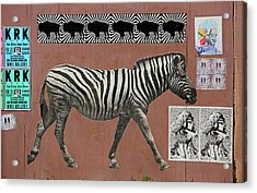 Acrylic Print featuring the photograph Zebra Collage by Art Block Collections