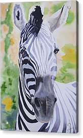 Zebra Crossing Acrylic Print by Ally Benbrook